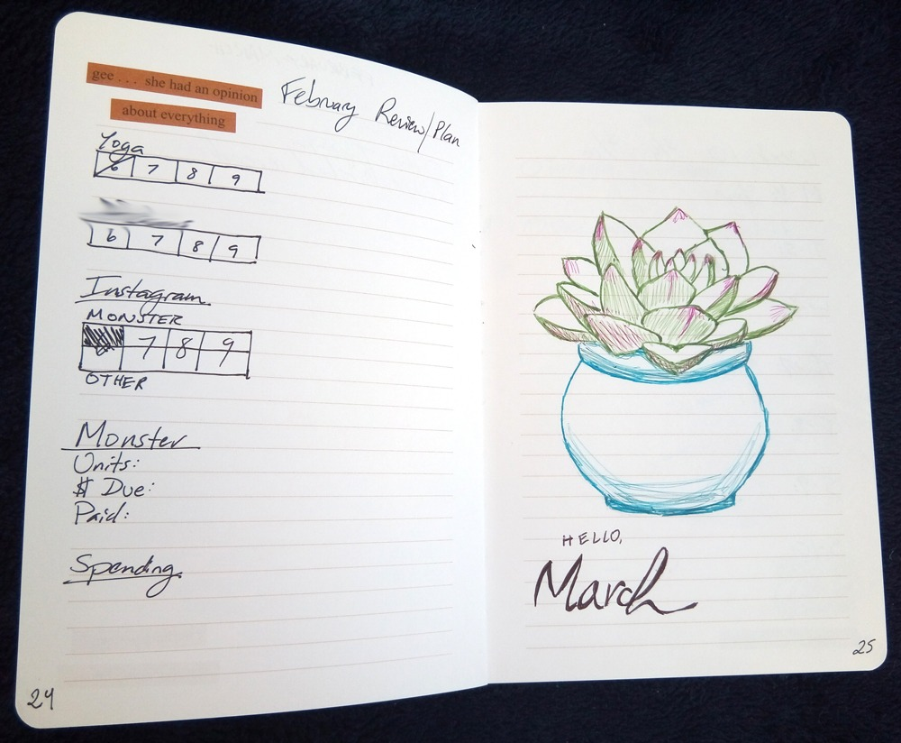 Bullet journal monthly review and start of new month